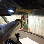 東京都よりご来店のランボルギーニムルシエラゴにプロテクションフィルムを施工させていただきました。